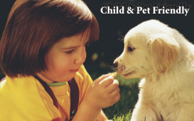 Get it Green safe for Kids and Pets